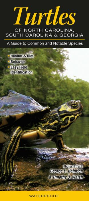 Quick Reference Publishing Turtles of the Carolinas and Georgia