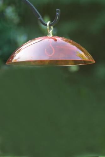 Bird's Choice Orange Dome with Brass Hanger