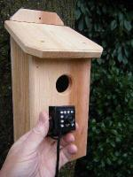 Northwoods Cedar Birdhouse with HD Hawk Eye Cam