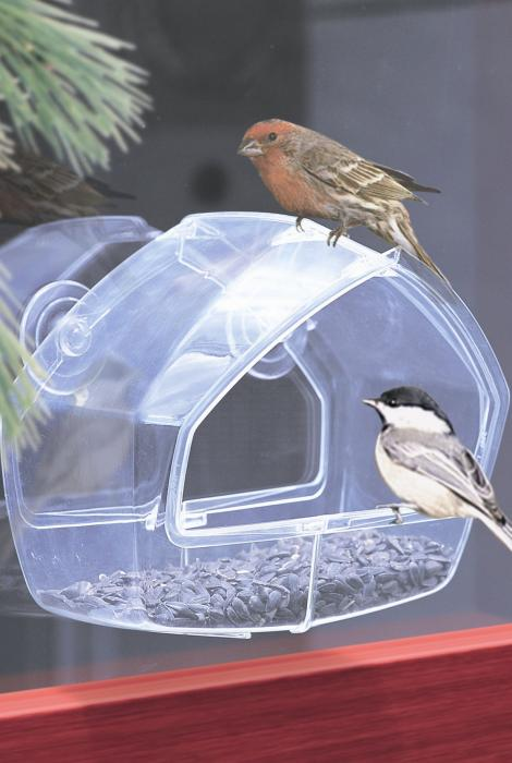 Perky Pet Clear Wild Bird Window Bird Feeder with Suction Cups