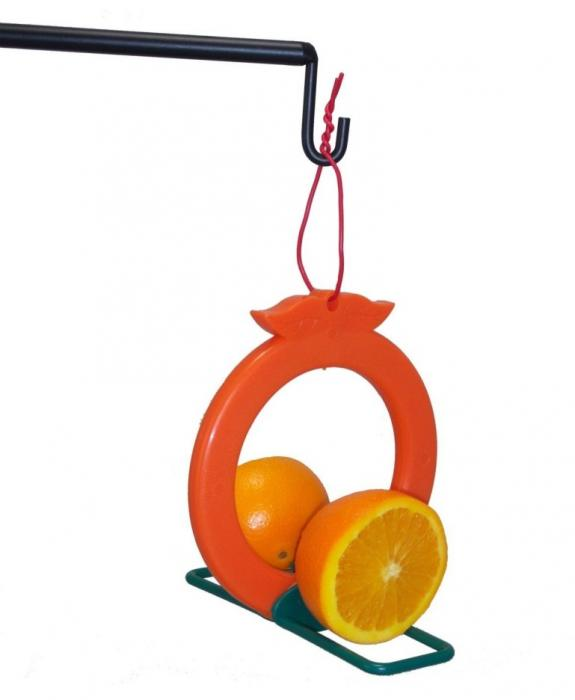 Songbird Essentials Double Orange Oriole Bird Feeder
