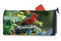 Magnet Works Cardinal Perch Mailwrap