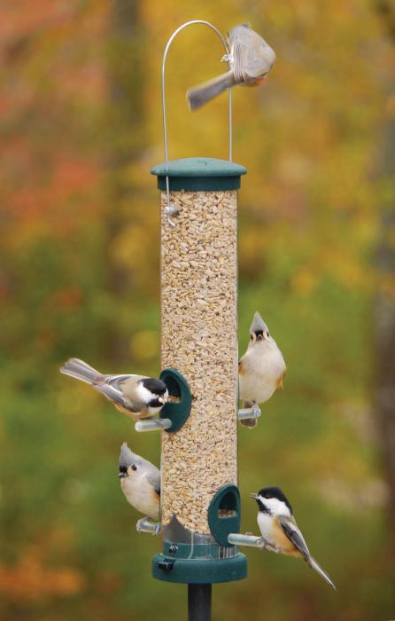 Aspects Quick Clean Medium Spruce Seed Bird Feeder