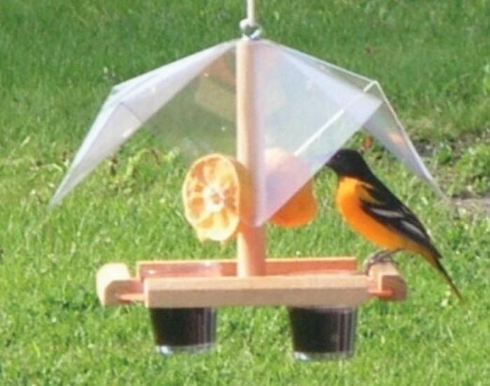 Songbird Essentials Buffet Oriole Bird Feeder