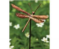 Ancient Graffiti Dragonfly Garden Ornament