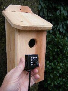 Birding Gift Ideas by Birdhouse Spy Cam