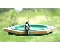 Songbird Essentials Mini Hanging Bird Bath Green