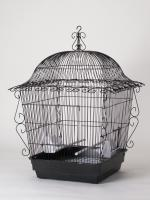 Scroll Cage Jumbo Blk 18x18x25