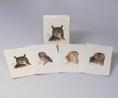 Steven M. Lewers & Associates Peterson's Owls Notecard Assortment (2 each of 4 styles)