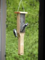 Birds Choice Double Cake Pileated Suet Bird Feeder with Hanging Cable