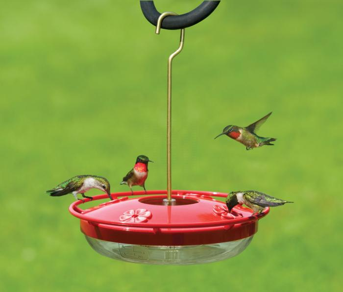 Aspects HummZinger HighView Hummingbird Bird Feeder