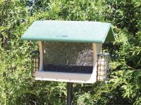 Birds Choice Recycled 7 Quart Hopper Bird Feeder with Suet Cages