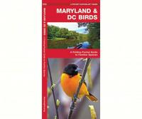 Waterford Maryland & DC Birds