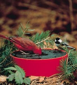 Heated Bird Baths by Happy Bird Corporation