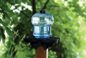 Non-Heated Bird Baths by First Nature