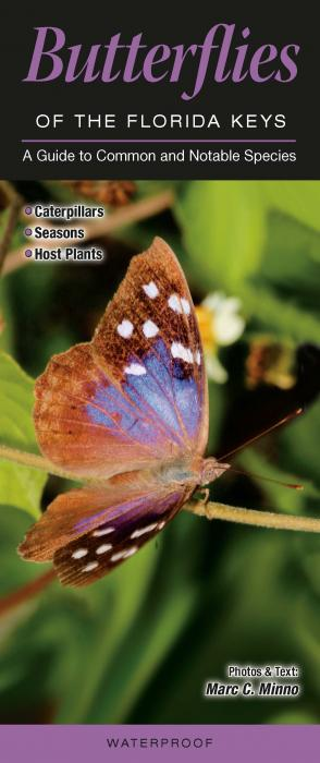 Quick Reference Publishing Butterflies of Florida Key