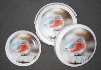 Songbird Essentials Mad Bluebird Coaster Set