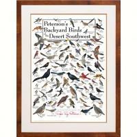 Steven M. Lewers & Associates Peterson's Backyard Birds of the Desert SW Poster