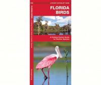 Waterford Florida Birds