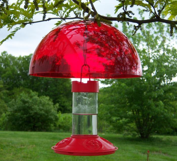 Songbird Essentials Hummer Helper Hummer Helmet