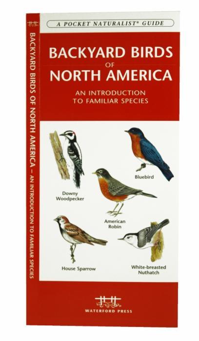 Pocket Naturalist Backyard Birds of North America