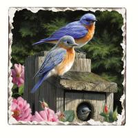 Counter Art Bluebirds Number 2 Single Tumbled Tile Coaster