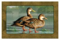 Counter Art Water Birds Paper Placemats 24 per set
