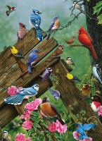 Outset Media Games Birds of the Forest 1000 pcs