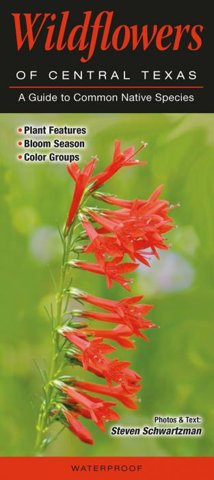 Quick Reference Publishing Wildflowers of Central Texas