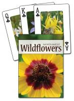 Adventure Publications Wildflowers of the Northwest Playing Cards