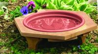 Songbird Essentials Mini 14 inch Garden Bird Bath With a Plastic Clay Tray