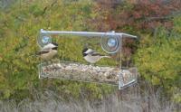 Songbird Essentials Clear View Open Diner Window Bird Feeder