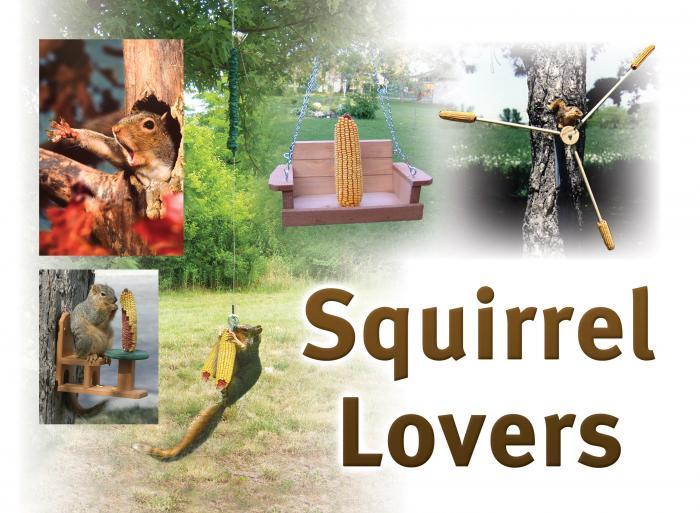 Songbird Essentials Squirrel Lovers Sign