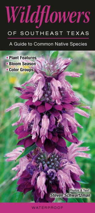 Quick Reference Publishing Wildflowers of Southeast Texas