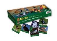 Impact Photographics Memory Game BirdsNorthAmerica