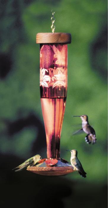 Schrodt Paradise Ruby Lantern Hummingbird Bird Feeder