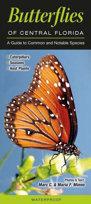 Quick Reference Publishing Butterflies of Central Florida