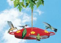 Perky Pet Oasis Hummingbird Bird Feeder