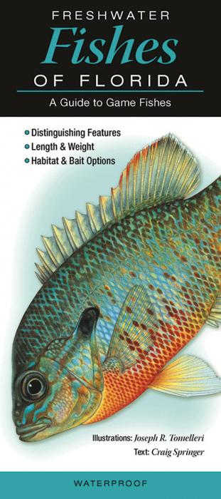 Quick reference publishing freshwater fishes of florida for South florida freshwater fish