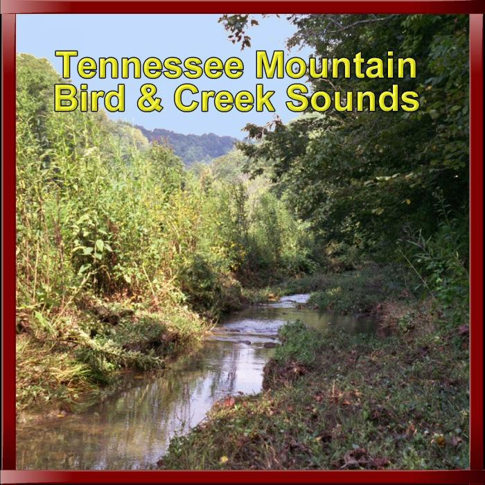 Peaceful Valley Productions Tennessee Mountain Bird & Creek Sounds CD