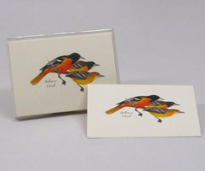 Steven M. Lewers & Associates Baltimore Oriole Notecard Assortment (8 of 1 style)