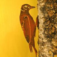 Elegant Garden Design Woodpecker Bird Silhouette