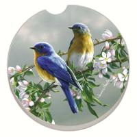 Counter Art Beautiful Songbirds Bluebirds Car Coaster