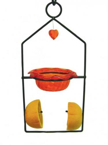 Bird's Choice Dual Oriole Bird Feeder