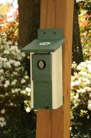 Songbird Essentials Two Toned Nesting Box