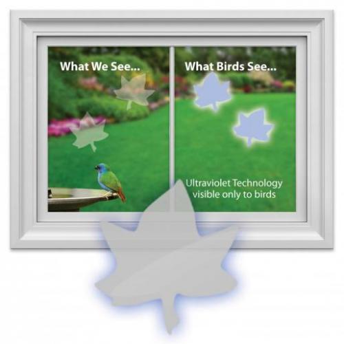 Bird's Choice Window Alert Maple Leaf Decals