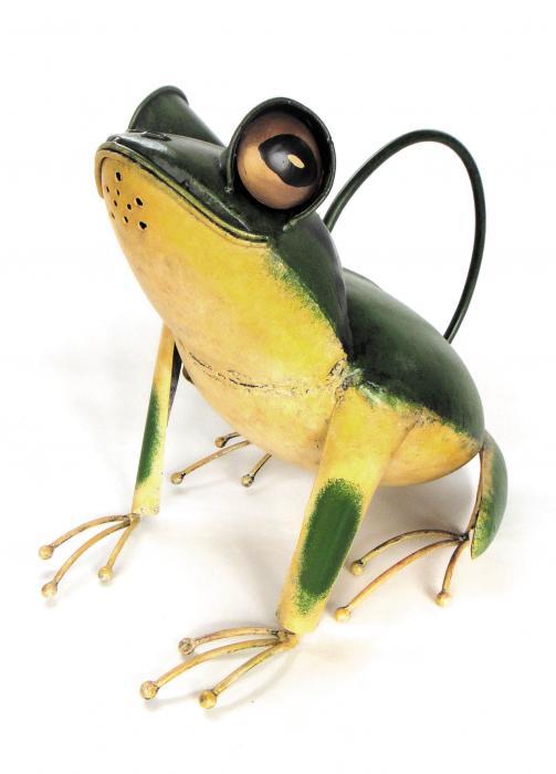 Blue HandWorks Tree Frog Watering Can