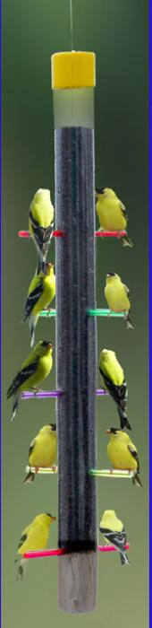 "S & K 24"" Rainbow Finch Tube Bird Feeder"