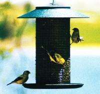 Woodlink Green Steel Magnum Sunflower Bird Feeder