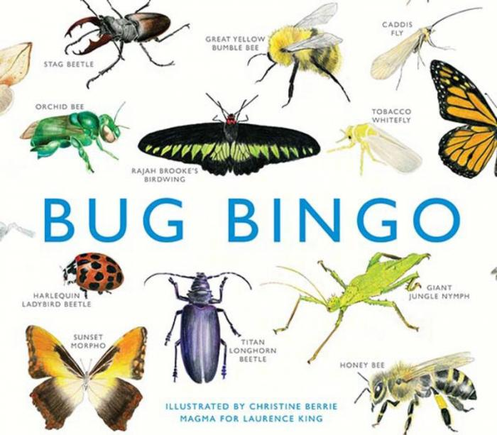 Chronicle Books Bug Bingo